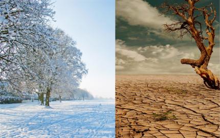 Harsh environments. Snow and desert